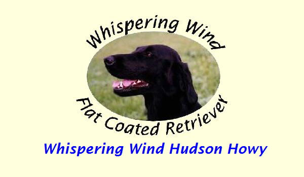 Whispering Wind Hudson Howy