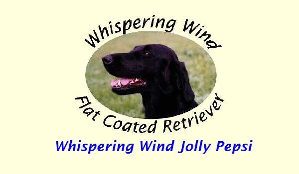 Whispering Wind Jolly Pepsi